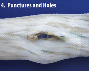 Punctures and Holes
